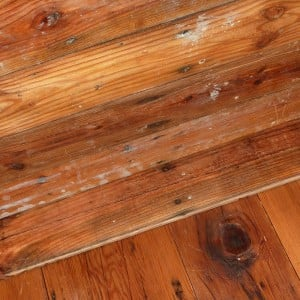 Tongue & Groove Pine Flooring